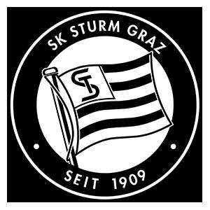 Bundesliga: SK Sturm vor Verpflichtung von Arnel Jakupovic
