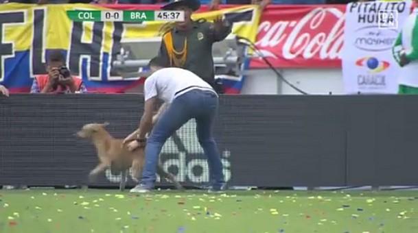 1 liga brasilien