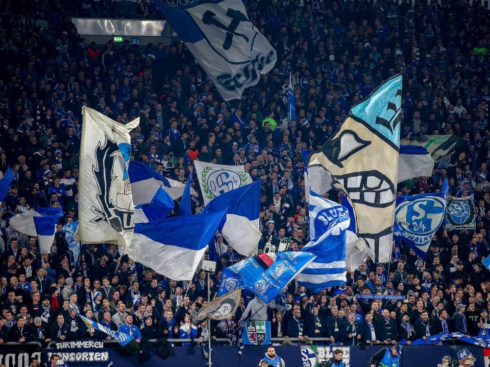 Schalke-Fan sitzt in U-Haft nach Schlägerei