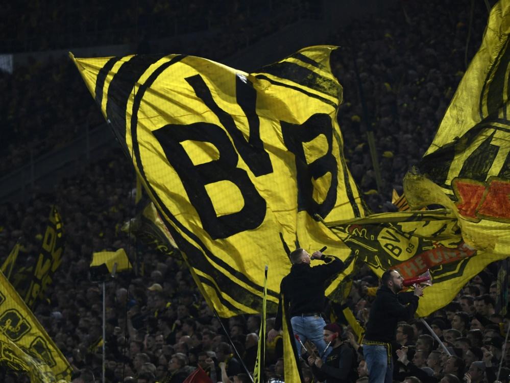 Der BVB verpflichtet Top-Talent Abdoulaye Kamara (Foto: SID)